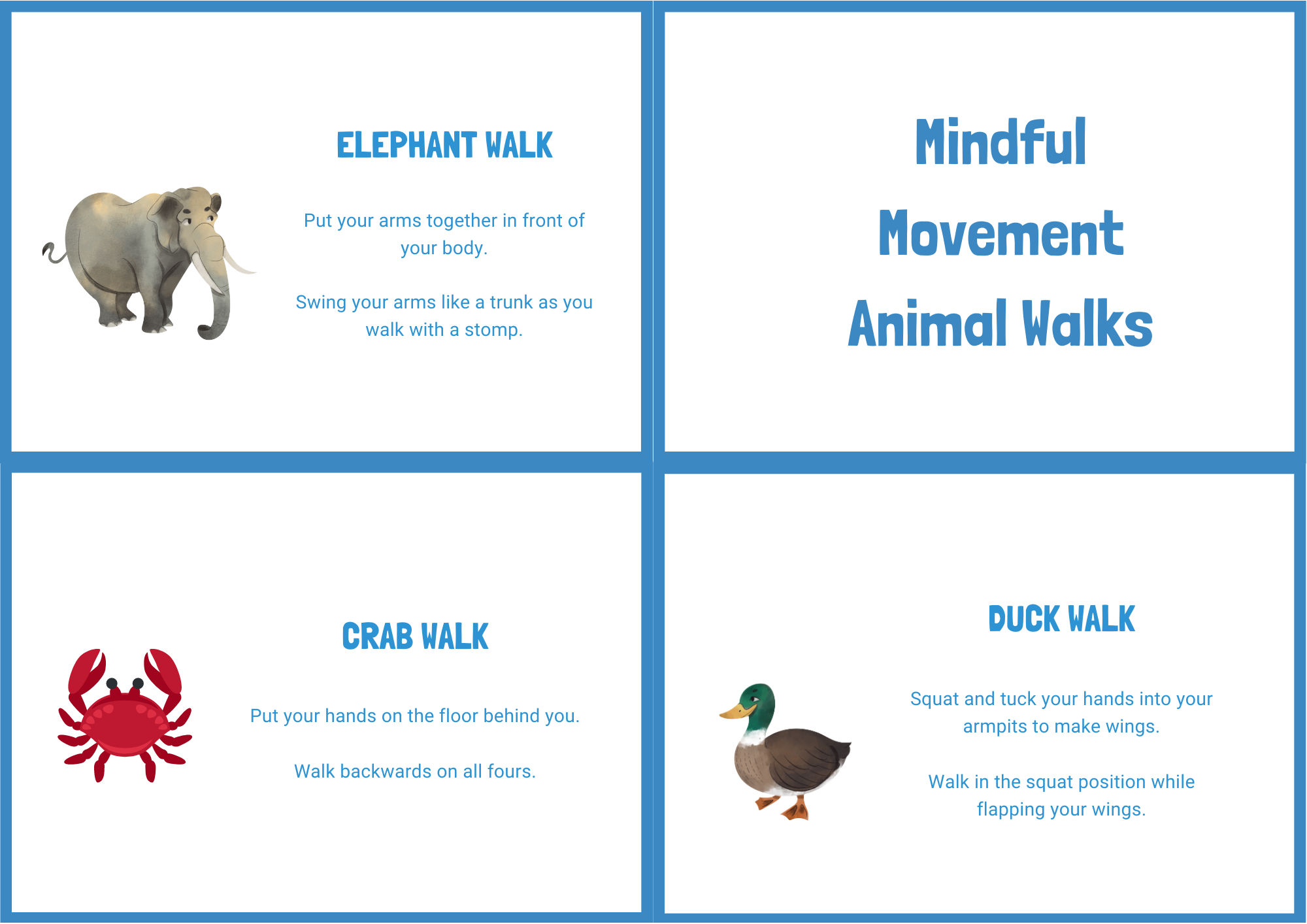 Animal Walks