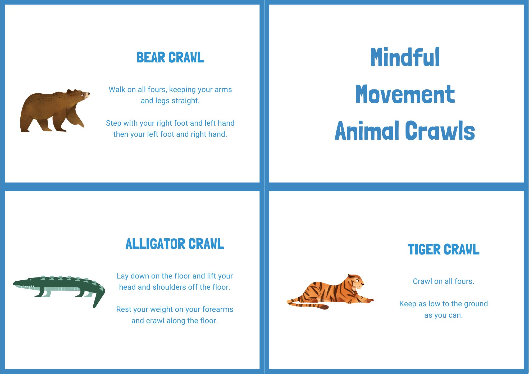 Animal Crawls